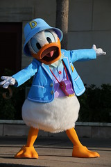 Welcome Greeting (sidonald) Tags: tokyo disney tokyodisneysea tds tokyodisneyresort tdr welcomegreeting greeting     donald