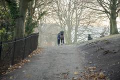 DSC_2453 (Mark Dunscombe2011) Tags: bathabbey alexandrapark cold mistymorning firstlight
