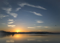 Chew Valley Sunrise (Stuart.67) Tags: clouds water reflection sun sunrise birds blue sky nikon d800 somerset england naturethroughthelens