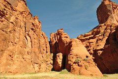 Canyon de Chelly, AZ  (Canyon del Muerto) (appaIoosa) Tags: appaloosa appaloosaallrightsreserved arizona az canyondechelly din navajo naabeeh navajonation navajoreservation navajonationreservation tsyi antelopehousetours benteller maynarddixon edwardscurtis canyondelmuerto