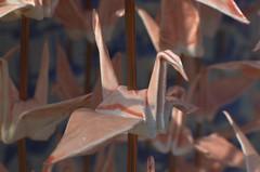 Pink origami crane, Nagasaki Atomic Bomb Museum