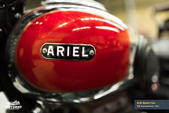 ariel-square-four-201503-web-60