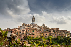Siena skyline 2