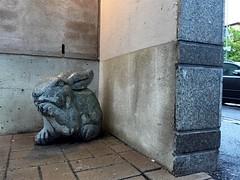 (Sameli) Tags: street rabbit stone corner suomi finland giant helsinki creepy