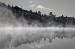 Shoreline Mist 1 (JeffStewartPhotos) Tags: morning blackandwhite bw mist lake ontario canada misty blackwhite algonquin toned algonquinpark whitefishlake algonquinprovincialpark