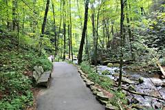Anna Ruby Falls (Bella Lisa) Tags: trees forest river bench georgia stream path falls helen annarubyfalls tubing cascade sautee cascada chattahoocheeriver helengeorgia nacoochee warefalls oldsauteestore benchmonday
