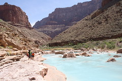 Grand Canyon 2015 631