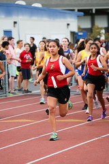 3X9A2793.jpg (Malcolm Slaney) Tags: crosscountry xc gunn 2015 lynbrook scval