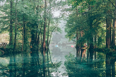 Devils Spring System (J. Parker Natural Florida Photographer) Tags: morning camping wild summer mist nature water landscape spring florida outdoor americanbeauty northflorida ginniesprings gilchristcounty vsco springhunters