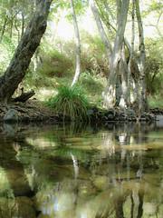 Mystic waters (msiapan) Tags: bridge cyprus venetian paphos  tzielefos