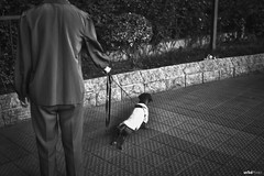People, Dog and Cat. #Street (unTed) Tags: china street city people blackandwhite dog sony 28mm beijing streetphotography documentary f2 fe a7