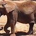 Oakland Zoo 20140406