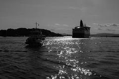 un reve, l'autre (alauzet) Tags: oslo transport norvege