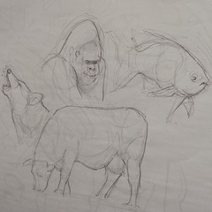 gestual animals - demonstration (Works by Issao Bazolli) Tags: animals illustration sketch draw ilustrao studies estudos gestual trao rascunho