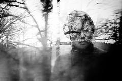 untitled . (helmet13) Tags: people bw woman tree travelling window train branch motionblur windowreflection aoi 200faves peaceaward fellowtraveler heartaward world100f leicaxvario