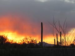 Tucson (Dan_DC) Tags: arizona tucson scenic