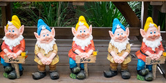 gardens9 (WITHIN the FRAME Photography(5 Million views tha) Tags: garden gnomes dwarfs objects art symmetry display colourful fuji xt1