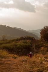 Osteria Bruciata (Eleonora Sacco | Pain de Route) Tags: via degli dei turismo toscana emilia romagna bologna firenze appennino betulle