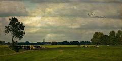 Milking Time (jacqaar) Tags: friesland franekeradeel cows church meadow nederland netherlands