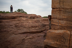 Playing hide and seek with a monkey (Scalino) Tags: india karnataka travel trip badami durga temple heritage site chalukyas chalukya hideandseek monkey baby