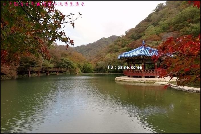 內藏山 (79).JPG