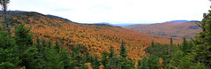 Hiking 100916 (Corey T. Burns) Tags: folliage fall mothernature hiking nh madison mountain color leaves leaf peeping change ending mountains new hampshire 4000