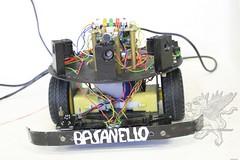 LabRobot_2013-14_015