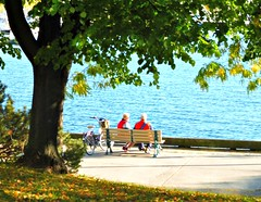 """""""We have not inherited the earth from our fathers, we are borrowing it from our children.""""  - L Brown (Trinimusic2008 - stay blessed) Tags: trinimusic2008 judymeikle nature hbm bench candid lake promenade bike couple outdoors toronto to ontario canada gojaysgo bluejays"""