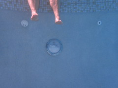 2 feet deep (jmaxtours) Tags: 2feetdeep 2feet pool jupiter jupiterflorida ranchoagave fla fl floridausa florida usa