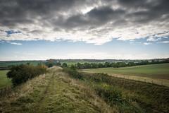 Devil's Dyke Walk-3 (adambowie) Tags: devilsdyke cambridgeshire newmarket