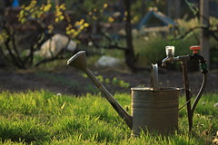 ntzkanna / Watering pot (bencze82) Tags: canon eos 700d voigtlnder apolanthar 90mm f35 slii ntzkanna watering pot
