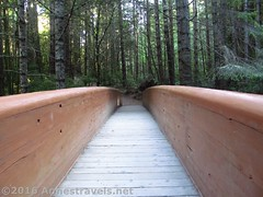Bridge to the Lady Bird Johnson Grove (Anne's Travels) Tags: redwoodnationalpark redwoods ladybirdjohnsongrove california