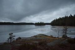 DSC_4130 (Unknown Explorer from Finland) Tags: kirkkonummi kirkkonummimeiko luonto luontokuva suomi finland