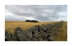 Aubrac (Yvan LEMEUR) Tags: aubrac muret muretdepierressèches randonnée solitude immensité météorologie nuages landscape paysage extérieur ambiance