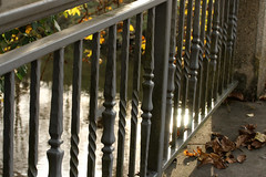 Sur le pont (gripspix (OFF)) Tags: 20161109 bridge brücke neckar river fluss geländer railing iron eisen