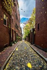 A Gust Of Wind At Acorn Street ((Jessica)) Tags: acornstreet gust acornst cobblestones narrow blustery wind 12mmrokinon beaconhill sonya6000 rokinon boston massachusetts newengland leaves