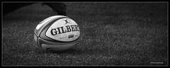 saracens v gloucester (jdl1963) Tags: saracens gloucester rugby union aviva premiership sport bw black white blackandwhite mono ball