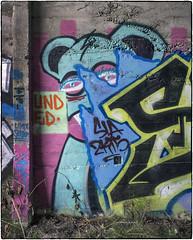 Peeking Out (NoJuan) Tags: 6d eos6d nikkorlens nikkor manualfocuslensondslr eoswithmanualfocuslens graffiti wallart