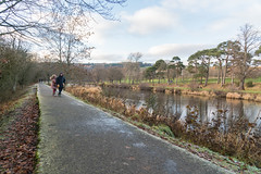 Peebles-16120433 (Our Dream Photography (Personal)) Tags: autumn countryside haylodgepark leelive neidpathcastle ourdreamphotography peebles river rivertweed scottishborders tweeddale walk winter woodland gutterbluid wwwourdreamphotographycom