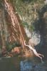 La fine di un inizio (Stefania Orizio) Tags: boy wild green love nature water vintage nude waterfall jump nikon grunge young free indie di mm 35 acqua nese libertà buche cascata