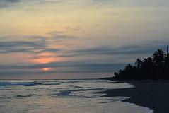 San Bernardo del Viento 16 (Stephaninie_) Tags: sunset sea summer beach del atardecer mar sand san playa viento arena amanecer aurora bernardo palmera isla orilla marea brisa