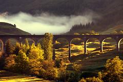 Morning sunlight and mist at Glenfinnan Viaduct (iancowe) Tags: bridge trees mist monument misty train sunrise scotland highlands harrypotter scottish railway tourist steam viaduct valley lochshiel glenfinnan fortwilliam lochaber mallaig glenfinnanviaduct