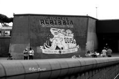 Roma. Metro Rebibbia. Street art. 'Welcome to Rebibbia' by Zerocalcare (R come Rit@) Tags: b urban blackandwhite bw italy streetart elephant rome roma muro art station wall project subway photography graffiti italia arte streetphotography wallart bn urbanart walls graff biancoenero graffitiart muri arteurbana metrob rebibbia graffitirome romegraffiti graffitiroma streetartrome streetartphotography romastreetart streetartroma romestreetart urbanartroma zerocalcare metrorebibbia ritarestifo urbanbreathproject romeurbanart welcometorebibbia