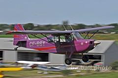 BRB_5343cesn c (b.r.ball) Tags: aviation openhouse bellanca 7gcbc guelphairpark tigerboys brball cfbsy
