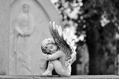 Angel wings (naromeel) Tags: bw canada cemetery quebec montreal