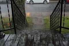 Pouring Rain (lefeber) Tags: street trees house newyork reflection wet rain architecture stairs rural town vines village steps sidewalk porch railing churchstreet peelingpaint raining smalltown hudsonvalley splashes highlandfalls