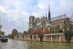 Paris Notre Dame (Kenny Teo (zoompict)) Tags: paris notredame