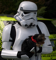 Hard and Soft (Two8five) Tags: vancouver starwars stormtroopers 501st stanleypark legion 501 pawsforacause outerrimgarrison