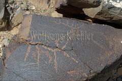 30095310 (wolfgangkaehler) Tags: old animal animals rock asian ancient asia desert deer mongolia centralasia petroglyph gobi reddeer blackmountains petroglyphs mongolian gobidesert southernmongolia