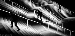 Upward Mobility (Greg Adams Photography) Tags: travel people blackandwhite bw stairs three exercise sandiego silhouettes rows conventioncenter runners workout 2015 hhsc2000